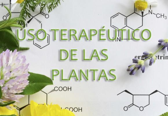 Uso terapéutico de las plantas